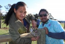Ruta Fou, the first female farm manager in Samoa, and Elvis Tuaia learning farm fencing techniques at Taratahi Agricultural Training Centre. PHOTO/EMILY NORMAN