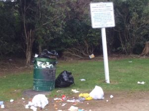 Bags of garden waste were found at the W.A Miller Scenic Reserve yesterday morning. PHOTO/SUPPLIED