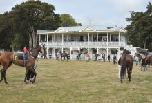 Masterton Racing Club Easter meeting, Tauherenikau Racecourse, Saturday, horses parade around the birdcage before the first race. PHOTO/FILE