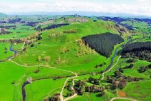 998-hectares of rural Masterton sold