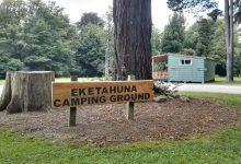 Eketahuna Camping Ground. PHOTO/EMILY NORMAN