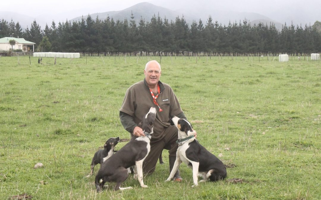 Keen eye for breeding top trials dogs