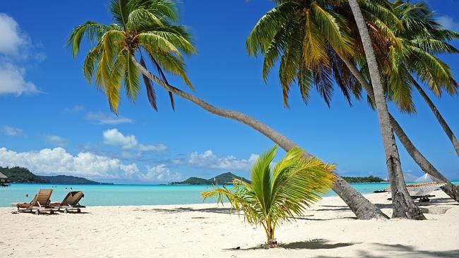 WIN a Tropical Island Holiday for TWO