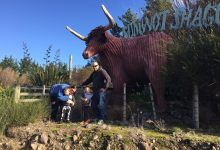Tracey and Blair Leitch with their sons Braxton, 4, and Ryan, 6, in front of the large corrugated iron highland cow at their lifestyle block property in Norfolk Rd, Masterton. PHOTO/SUPPLIED