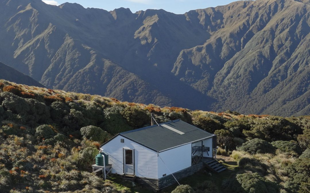 Popular Tararua park sites reopen