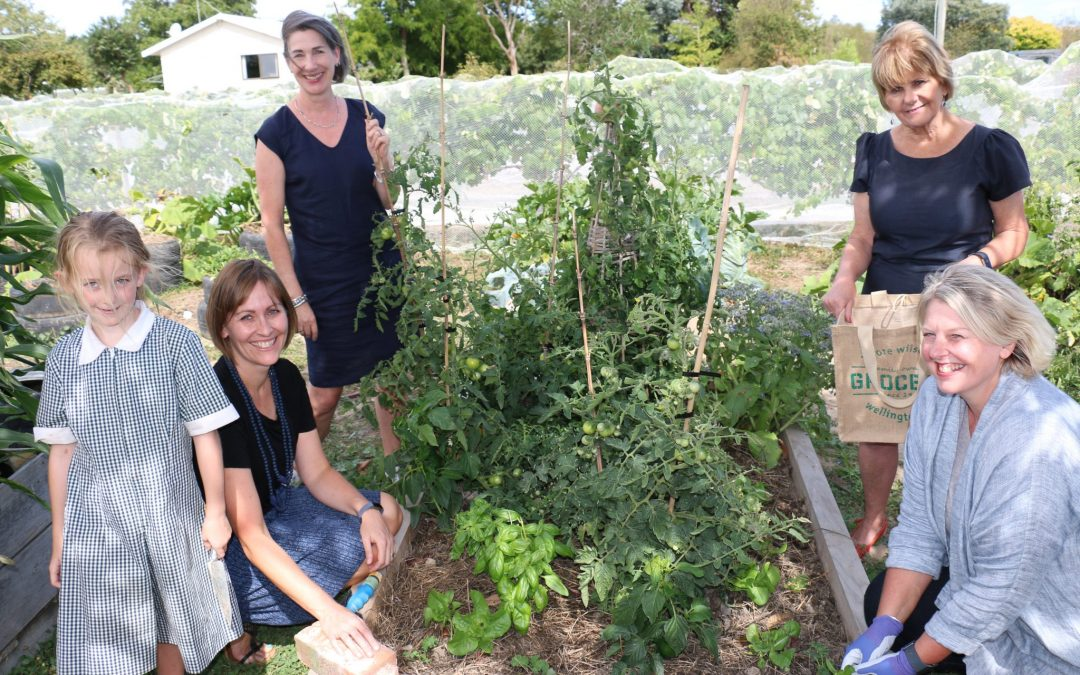Free food project to promote healthy living