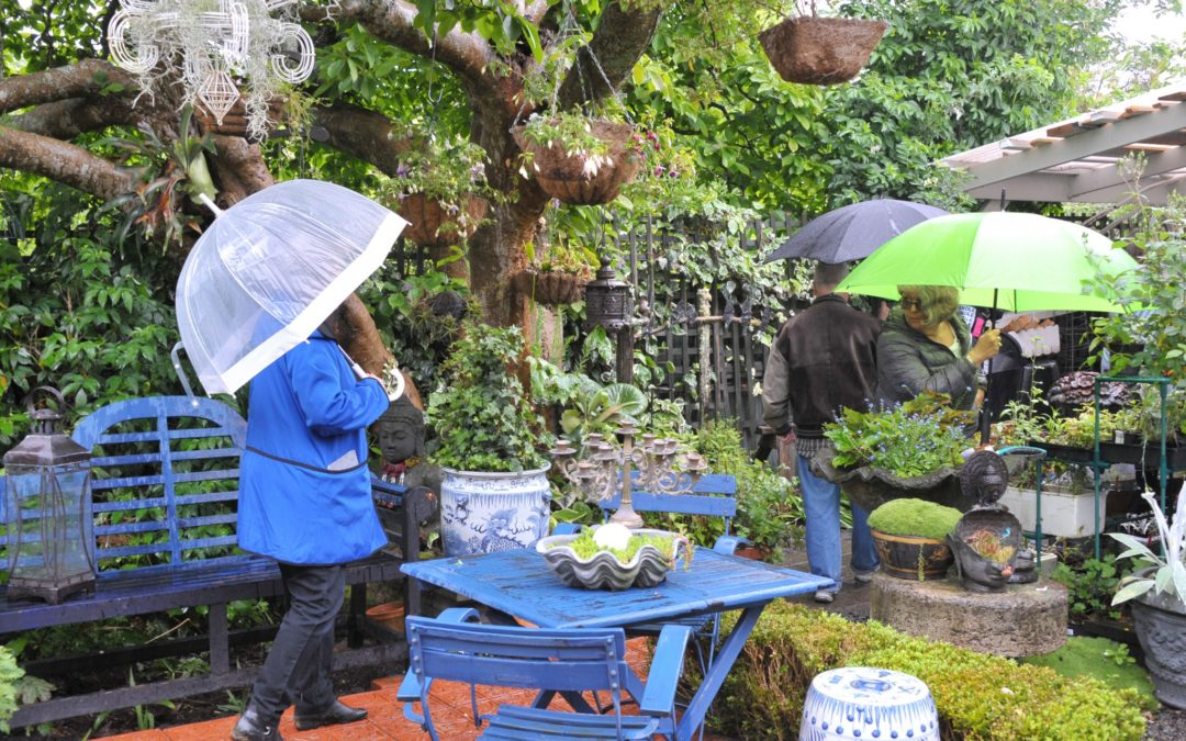 Garden tour a soggy success