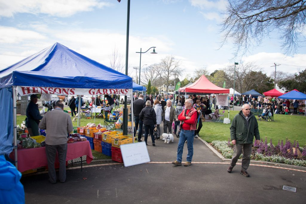 Daffodil Festival in Carterton. PHOTO/JADE CVETKOV