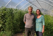 Greytown farmers Frank van Steensel and Josje Neerincx in one of their greenhouses, abundant with produce.PHOTOS/HAYLEY GASTMEIER