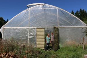 Wairarapa Eco Farm provides weekly vegetable and fruit boxes to 150 individuals and families in Wellington and Wairarapa.