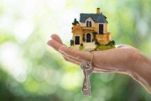 Property market stabilises