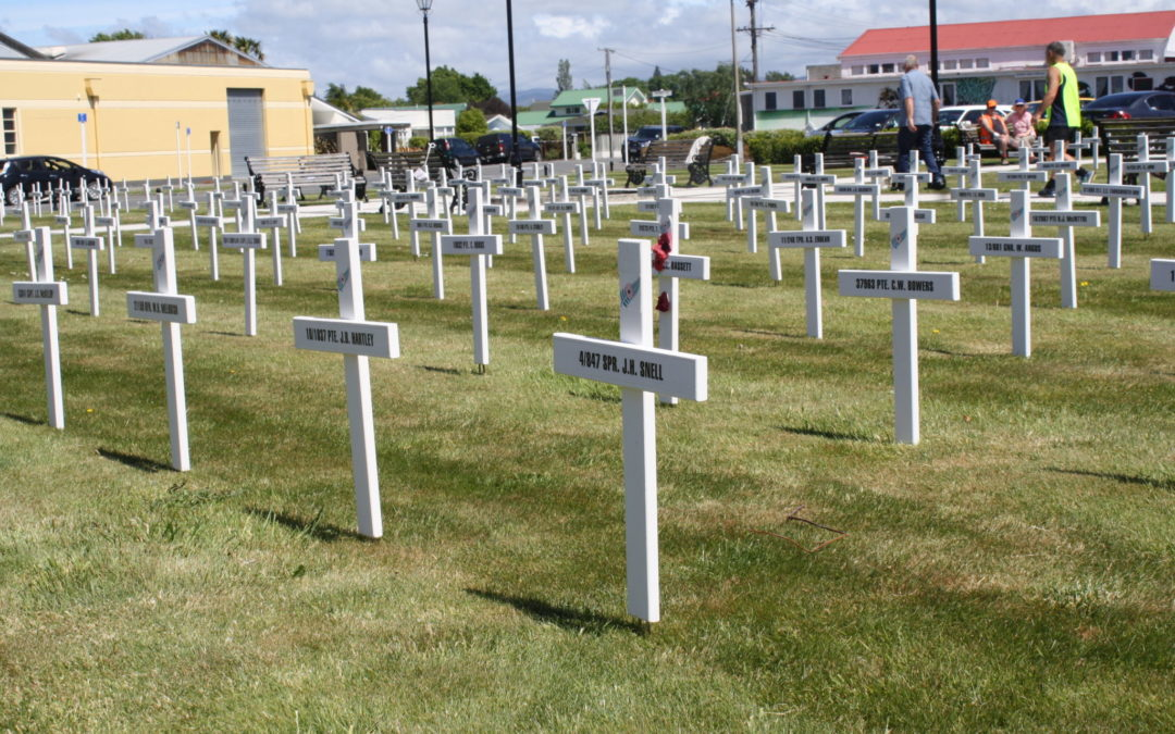 Crosses display for Armistice Day