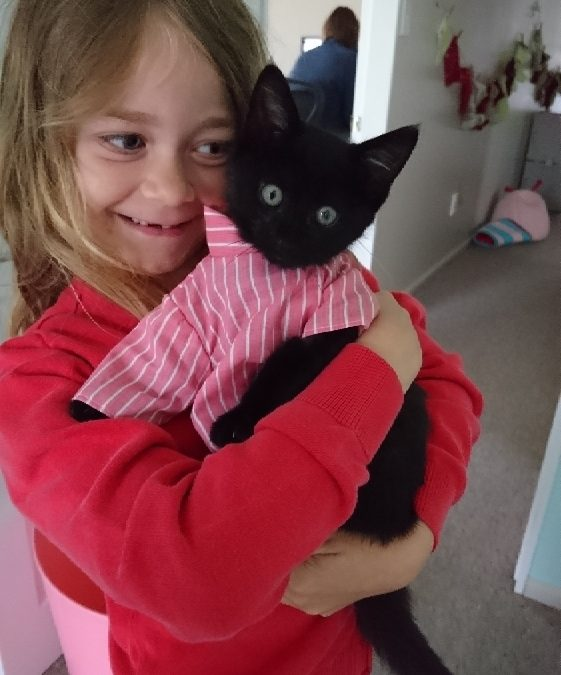 What's new KittyCat? A rehoming update
