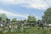 Orchard plans blossoming