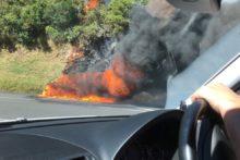 Car fire closes Remutaka Hill Rd