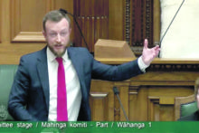 McAnulty bill proceeds slowly