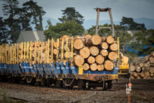 Push for northern rail freight route