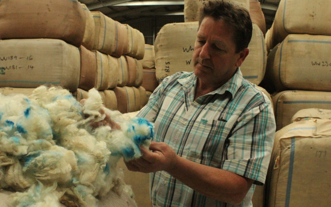 Blue wool uncool, says industry expert