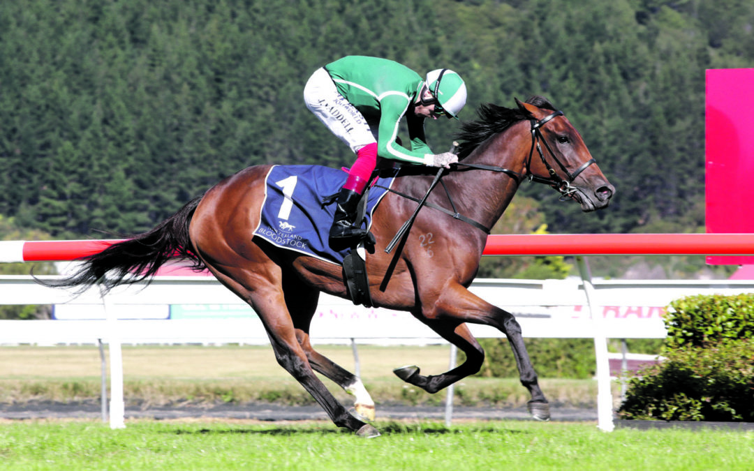 Filly's NZ Oaks victory delights local owners