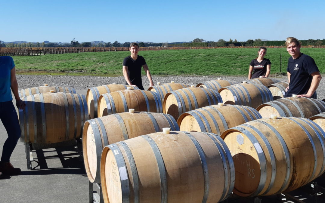 Winning harvest for wineries
