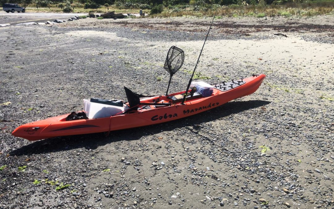 Search extends to Palliser Bay