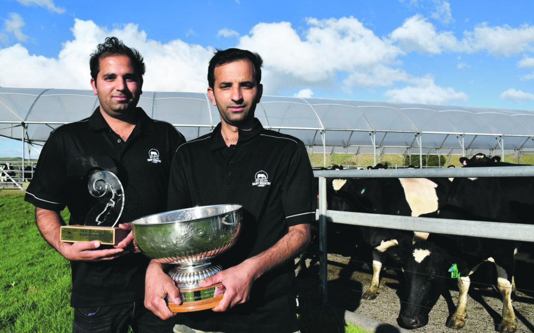 Brothers share in farming success
