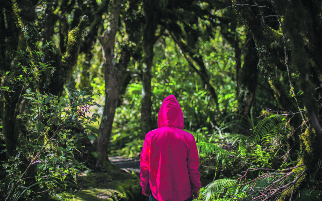 Hiker spends night in the bush